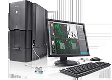 Delphi Integrated Correlative Light and Electron Microscope