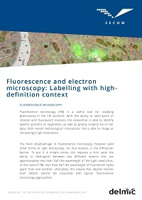 FM and EM: Labelling with high-definition context