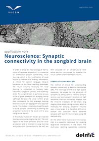Neuroscience synaptic connectivity in the songbird brain application note